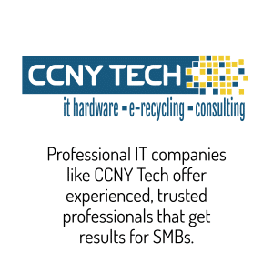 Professional IT companies offer experienced, trusted professionals